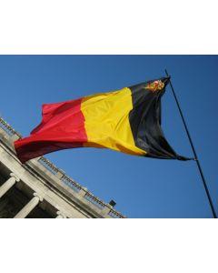 Bandera Belga con escudo 30 x 45 cm